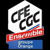 CFE-CGC Orange 3.4.3.1