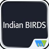 Indian BIRDS 6.1