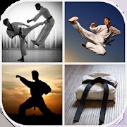 Martial Arts Wallpaper 4.0.8