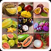 Экзотические фрукты мира - от папайи до маранга 3.1.7z