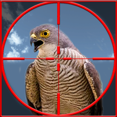 Taloor Hunting 1.7.1