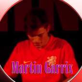 Martin Garrix All Songs 1.7