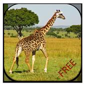 Giraffe Game Puzzle 1.0