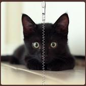 Black Kitty Zipper Lock 1.0