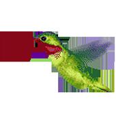Humming Bird 1.0
