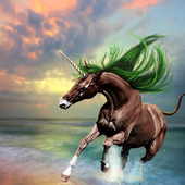 Unicorn Jigsaw Puzzles For Adults 1.0