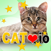 Cat io (Opoly board game) 4.58