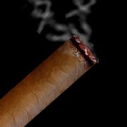 v Cigar 1.8