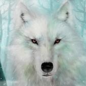 Wild animals hunting - Bear & Wolf Hunting Shooter 1.1