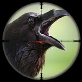 City Crows Hunter 3D Simulator 1.0