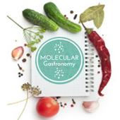 Molecular Gastronomy 1.0