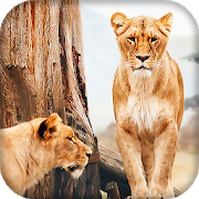 com.moving.wallpapers.lion.live.wallpaper icon