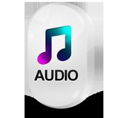Audio Codec 25.0.2