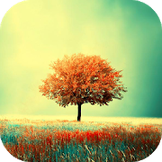 Awesome-Land Live wallpaper HD : Grow more trees 3.4.1