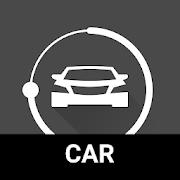 NRG Player Car Skin car_1.3.6
