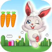 Rabbit Run Adventure 2.0