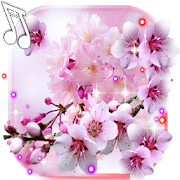 Blossom Cherry live wallpaper 1.4