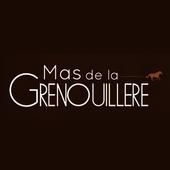 Hôtel Mas de la Grenouillère 1.0