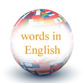 English Words 1.0