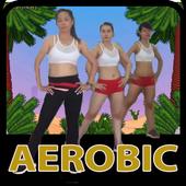 Aerobic Weight Loss 1.0