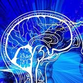 1 NeuroCTA Overview 101.0