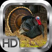 Turkey Hunter 2015 1.0