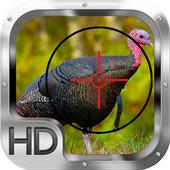 Wild Turkey Hunting Gold Pro 2.0