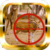 Whitetail Buck Hunter 1.0