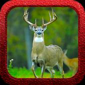 Whitetail Deer Slayer 1.0