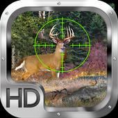 Jungle Deer Safari 2.0
