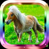 Little Pony Matching 1.0
