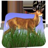 Deer Hunter 3D 1.3