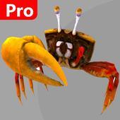 crab avenue pro