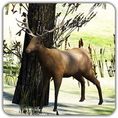 The Wild Hunter 1.0