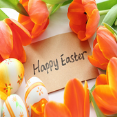 Happy Easter SMS And Images 1.0