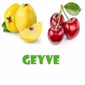 Geyve 0.0.2