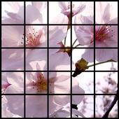 Puzzle 1.3