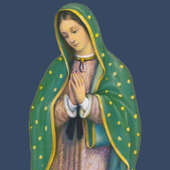 Our Lady of Guadalupe - NY