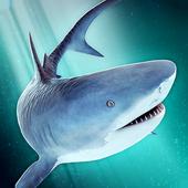 Sharks Battle - Survival Fight 1.0.0