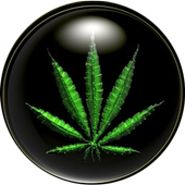 Weed HD Wallpapers 2.1