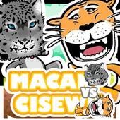 macan vs cisewu keblinger 2