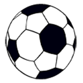 World Cup - Touch Ball