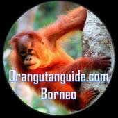 Orangutan Guide Borneo 1.0