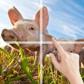Puzzle Farm Animals 1.4
