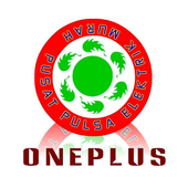 OnePlus Reload 2.4