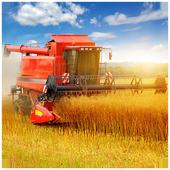 Wheat combine harvester Jigsaw 1.0