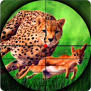 Cheetah Hunter 2016 28.1217