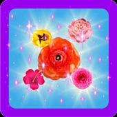 Blossom Blast Star 1.0
