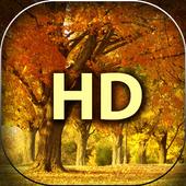 Nature HD Wallpapers - Natural 4k Wallpapers 1.0