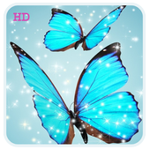 Cool Blue Butterfly HD Live WP